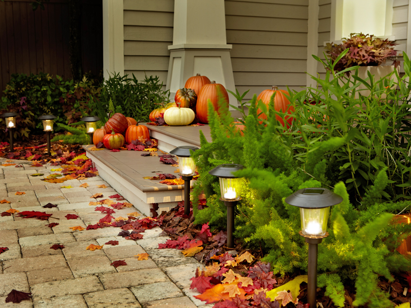 HSN_HGTV-HOME-solar-lights