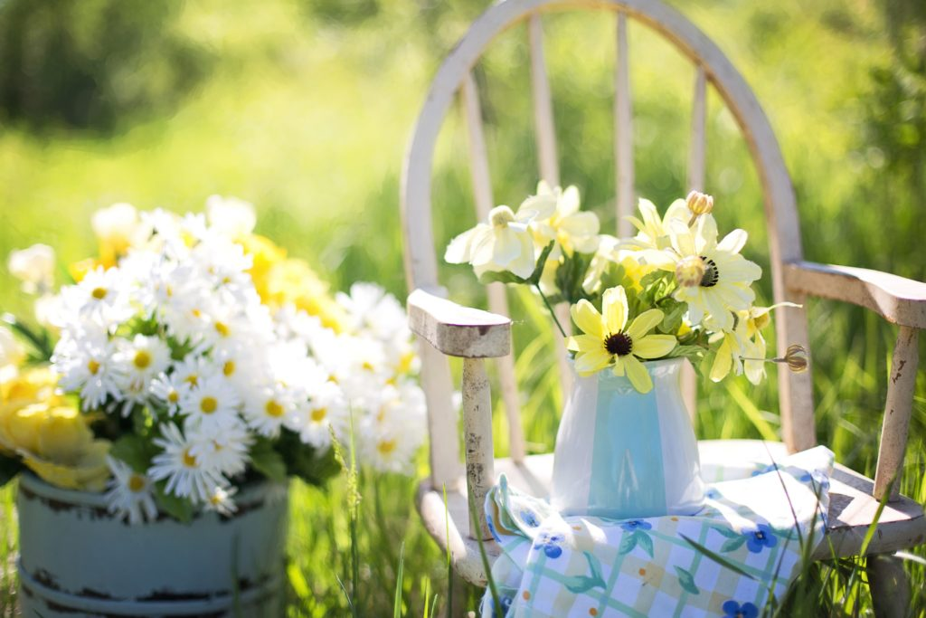 summer-still-life-daisies-yellow